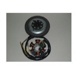 Volante magnetico Ducati Motor AM